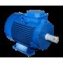 Электродвигатель АИР 100 L8 1.5/750
