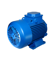 Электродвигатель АИР 100 L6 2.2/1000
